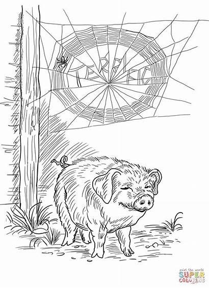 Charlotte Web Coloring Wilbur Charlottes Pages Pig