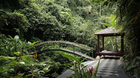 ubud luxury hotel resort hanging gardens bali