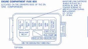 Ford Escort Sohc 2000 Fuse Box  Block Circuit Breaker