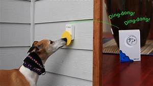 How it works pebble smart for Smart dog door for wall