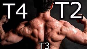 T2 Vs T4 Compared To T3
