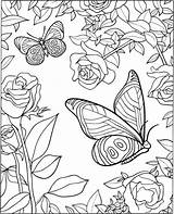 Coloring Pages Butterfly Adults Adult sketch template