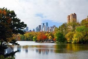 Nouvelle · ville · manhattan · parc · panorama · automne ...