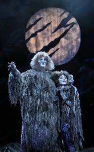 cat tour review cats broadway in chicago chicago theater beat