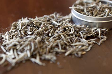 white tea caffeine how much caffeine is in white tea