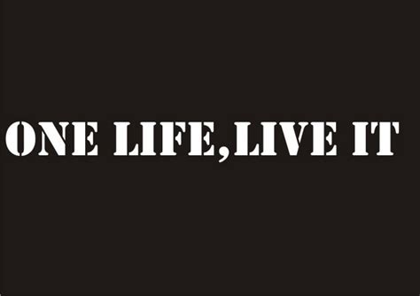 One Life Live It Decal