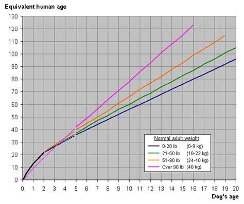 calculate dog years
