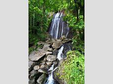 So Many Things to Do in Rio Grande, Puerto Rico Puerto