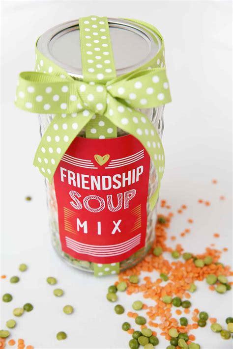 friendship soup mix skip   lou