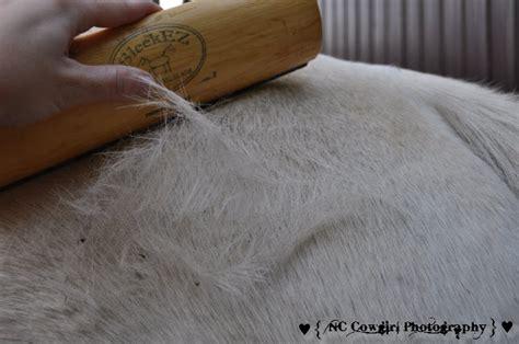 Sleekez Shedding Blade by Grooming Tool Sleekez Shedding Blade
