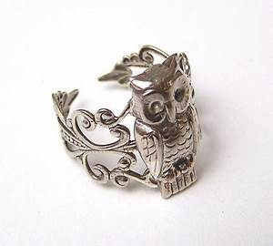 did you miss me With owl wedding rings