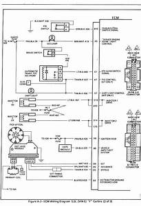 1984 Chevy 350 Small Block Ignition Wiring Diagrams : affordable mpfi chevy 350 wiring diagram ~ A.2002-acura-tl-radio.info Haus und Dekorationen