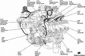 31 1998 Ford Expedition Heater Hose Diagram