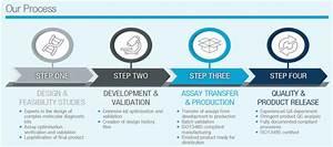 Primerdesign Assay Development Services R D Services
