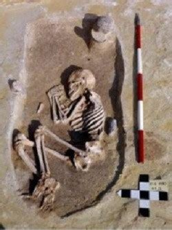 social inequality    stone age finds study