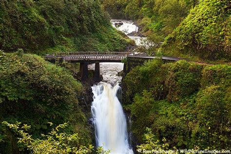 bridge saw for 49 best beautiful places i ve been pacific images on 4901
