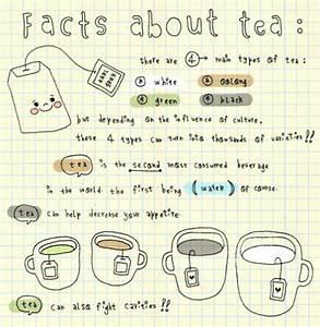 tea facts on Tumblr