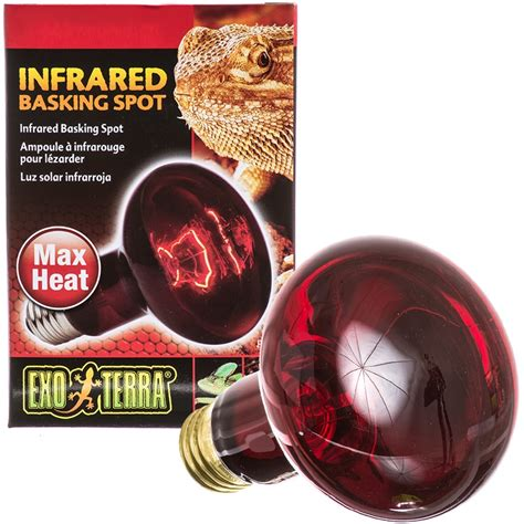exo terra heat l reptile night bulbs infrared lights ls discount