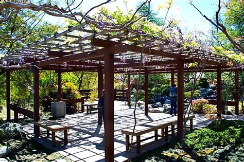 japanese friendship gardens balboa park san diego ca the