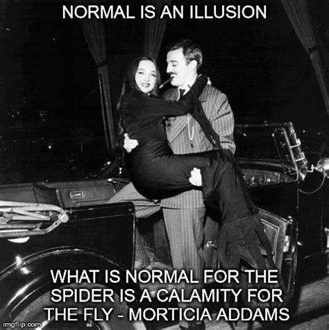 normal   illusion imgflip
