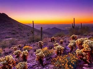 Arizona, Sunset, Desert, Area, Orange, Sky, Clouds, Desktop, Hd