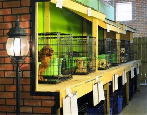 cheap small dog boarding small cages
