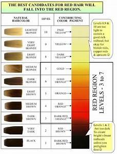 The Haircolor Expert Formulation Secrets For Red Haircolor