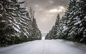 Winter, Road, Snow, Trees, Wallpapers, Hd, Desktop, And, Mobile, Backgrounds