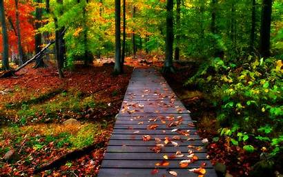 Desktop 3d Nature Wallpapers Autumn Pixelstalk