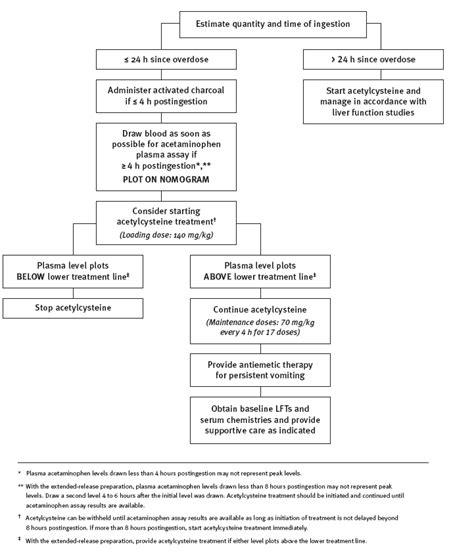 tylenol acetaminophen drug information overdosage  contraindications prescribing