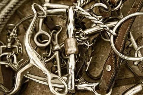 Best Horse Bits [2020] - Equine Ridge [Recommended Horse Riding Bits for English Western and all ...
