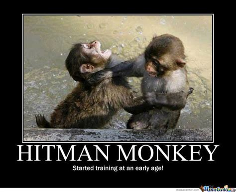 Meme Monkey - 35 very funny monkey meme photos and pictures