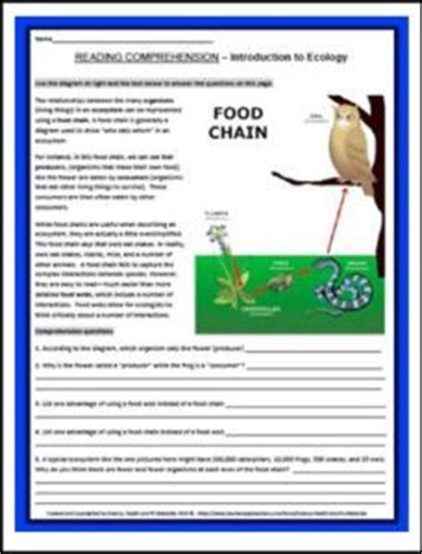 524 best science food chains food webs images on