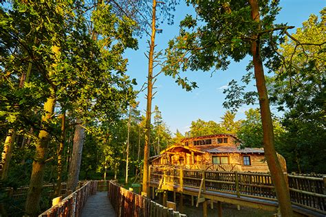 First Look At The New Elveden Forest Treehouses-under