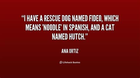 rescue dog poems  quotes quotesgram