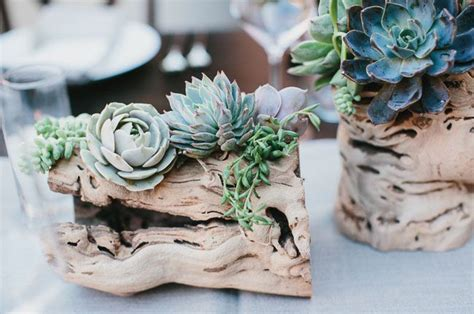 65 Great Eye Popping Succulent Photos For Wedding Ideas