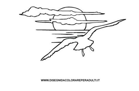 Disegno Gabbiano - gabbiano disegni da colorare per adulti