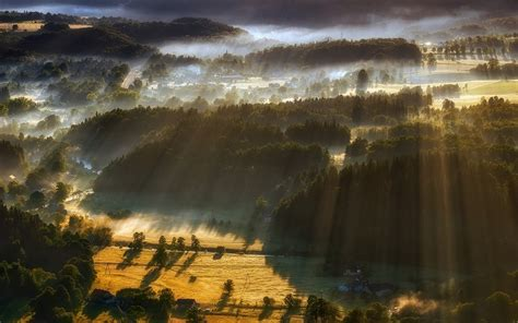 landscape nature sun rays sunrise mist forest hill