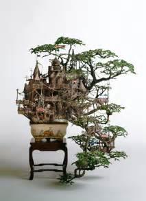 bonsai tree guide shop bonsai tree gardener