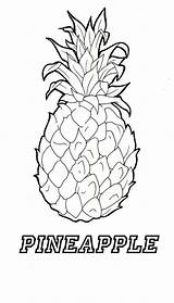 Pineapple Coloring Pages Printable Adult Sheets Template Clip Apple Getdrawings Adults Templates Coconut 915px sketch template