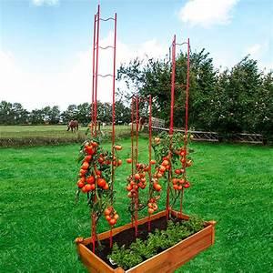 Tomaten Im Hochbeet : tomaten rankgitter l 2 teilig h he 166 cm von g rtner p tschke ~ Whattoseeinmadrid.com Haus und Dekorationen