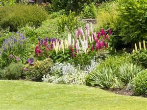border gardens ideas top tips and ideas for a better garden border saga