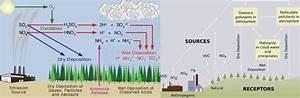 Acid Rain  Causes  U0026 Effects