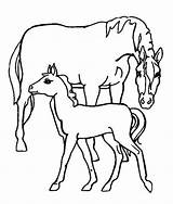 Coloring Horse Pages Popular sketch template
