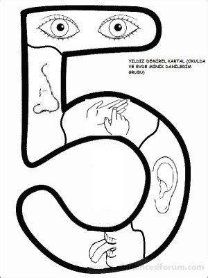 Beş Duyu Organı Boyama Sayfası Resimlere Göre Ara Red