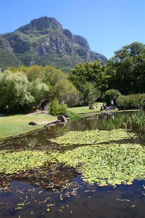 Botanischer Garten Kapstadt by Kirstenbosch Botanischer Garten Bilder Kapstadt In S 252 Dafrika