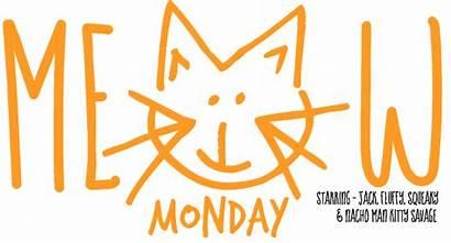 Monday Meow Cats Start Week Jack