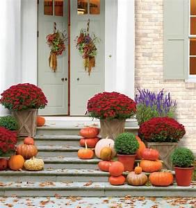 Herbstblumen Für Kübel : zeit f r eine bunte herbstbepflanzung ideen f r gro e k bel sammeln ~ Buech-reservation.com Haus und Dekorationen