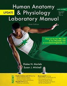 Human Anatomy  U0026 Physiology Laboratory Manual With