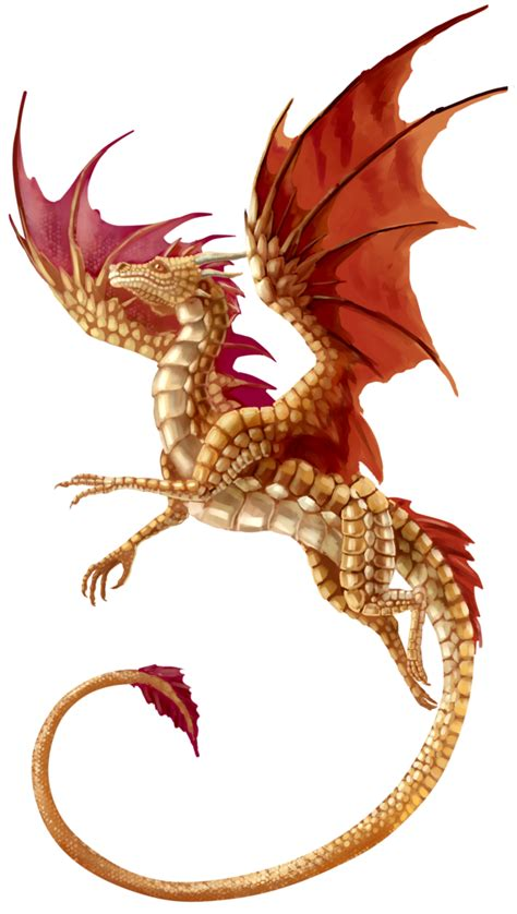 flying dragon transparent background png mart
